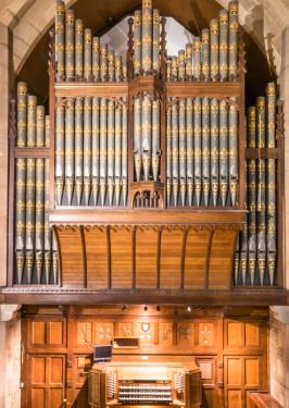 Organ Restoration Progress Image